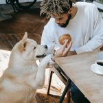 13 Human Food Items Your Dog Must Avoid