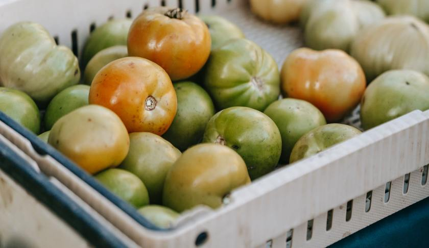 Green Tomatoes and Potatoes