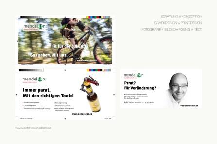echt-ideenleben-imagepflege-projekte-webdesign-text-mendelean-gmbh-schweiz-image-02