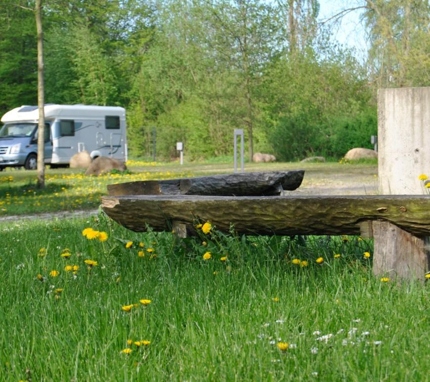 Grüne Wiese mit Löwenzahn im Hintergrund ein Wohnmobil