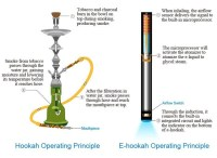 What are the essential difference between tobacco ...