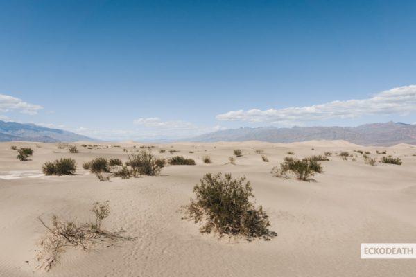 Partie 9 - Death Valley-14-min