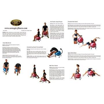 Carnegie Ball Chair - Bürostuhl-Sitzball-Kombi mit Lendenwirbelstütze, 5 bremsbare Rollen, voll höhenverstellbar, Ball separat nutzbar -