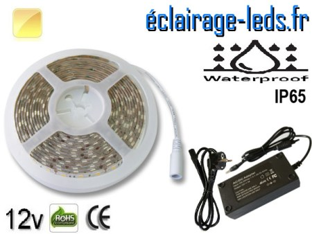 Bandeau LED 5m Blanc chaud IP65 smd5050 12v