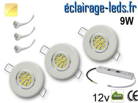 Kit Spot MR11 orientable blanc 12 LED blanc chaud 12V
