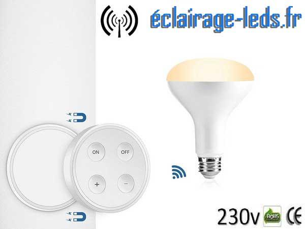 Ampoule LED MR16 24 Led