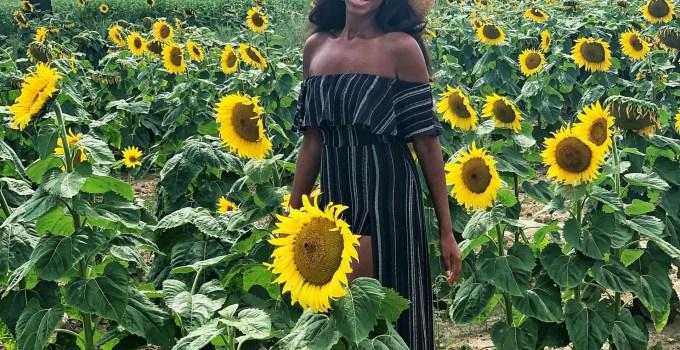 Mini Road Trip To The Sunflower Field