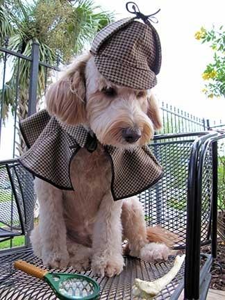 sherlock-hound