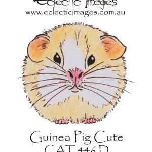 Guinea Pig Cute