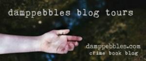 Damppebbles.com