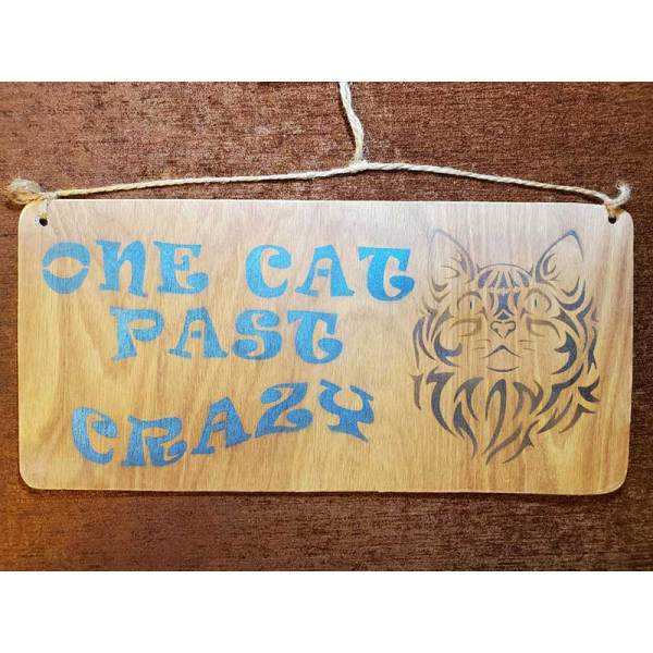 """""""One cat past crazy"""" sign by Eclectics Creations"""