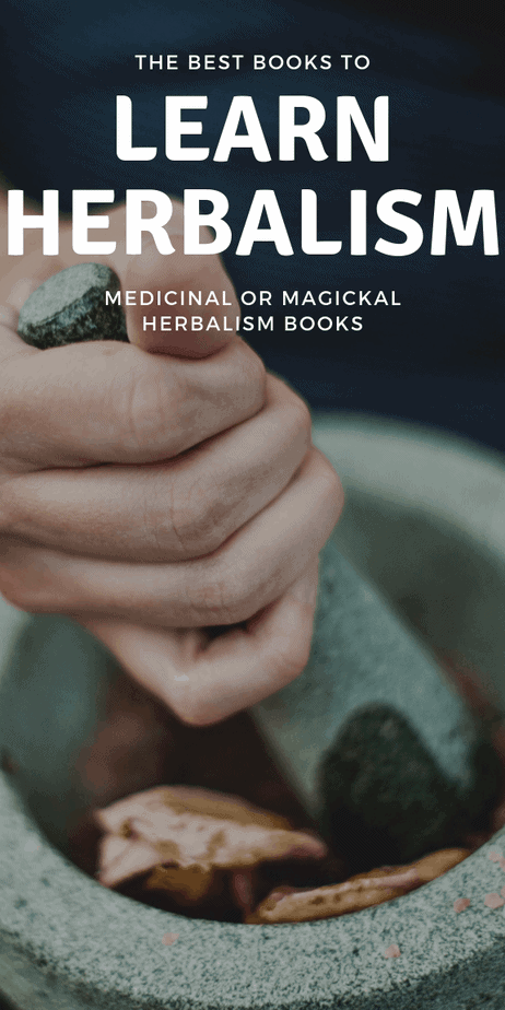 Learn how herbalism works, what plants to use, how tinctures are made, wildcrafting and wild plant foraging, and more with this herbalist books. #herbalism #herbalist #books #reading #book #toread #witchcraft #witch #pagan #wicca #occult #wiccan #paganism