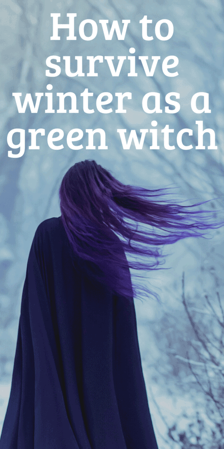 Activities for green witches during Yule. Yule gift ideas, gardening tips for winter, green witchcraft when it's snowy outside. How to be surrounded by real plants even in the dead of winter. #yule #witch #greenwitch #witchcraft #christmas #pagan #paganism #wicca #garden #gardening #wreaths #christmastree #yuletree #poinsettia #herbaltea