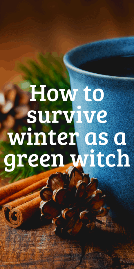 How can a green witch celebrate Yule? Yule gift ideas, gardening tips for winter, green witchcraft when it's snowy outside. How to be surrounded by real plants even in the dead of winter. #yule #witch #greenwitch #witchcraft #christmas #pagan #paganism #wicca #garden #gardening #wreaths #christmastree #yuletree #poinsettia #herbaltea
