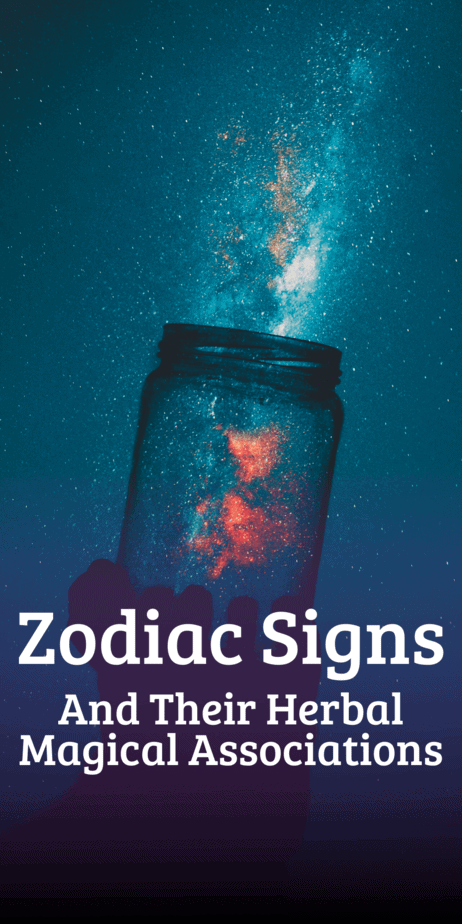 Which herbs correspond to your astrology sign in witchcraft? Learn about herbalism and the zodiac. #astrology #herbalism #zodiac #magic #magick #witch #witchcraft #pagan #wicca