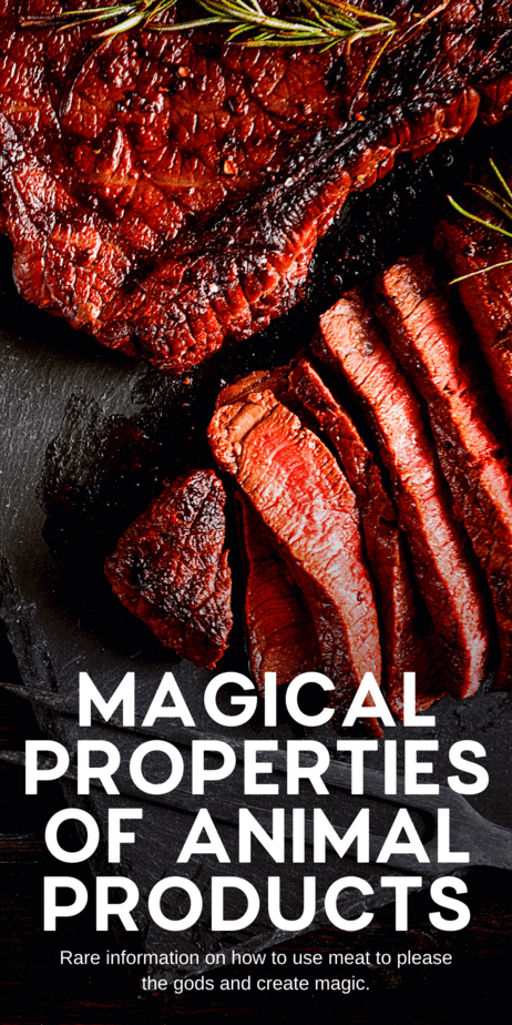 Non-vegan magical properties for meat an animal products. Witches nowadays are very concerned with the ethical ramifications of our magic and our food. For that reason, a lot of witches are vegetarian or vegan. These magical properties are for witches that use meat in kitchen witchcraft. #kitchenwitch #witch #witchcraft #magic #pagan #meat