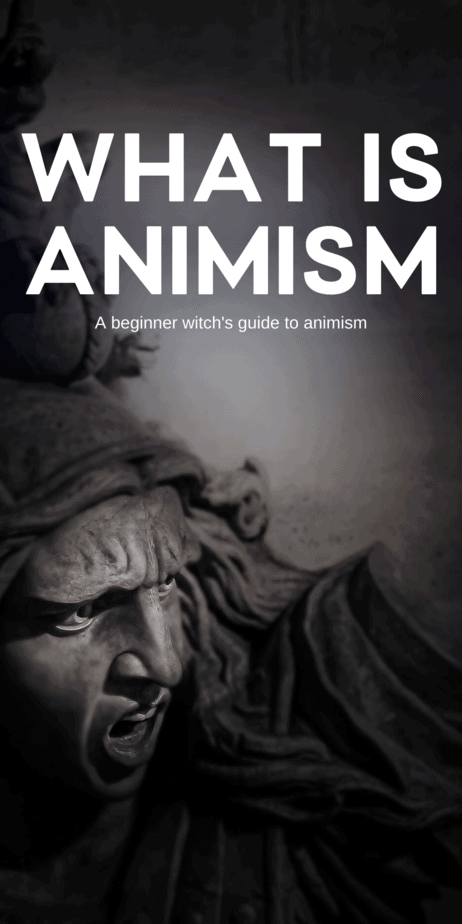 Decorative Image | A Beginner Witch's Guide To Animism | There are a lot of terms that get thrown around in the magickal community. Unfortunately, very few of them are intrinsically obvious. So I've been hearing people talk, off and on, about animism. Today I'm going to talk a little bit about animism, what it is, different animistic religions, and how you, as an eclectic witch, can learn from them.