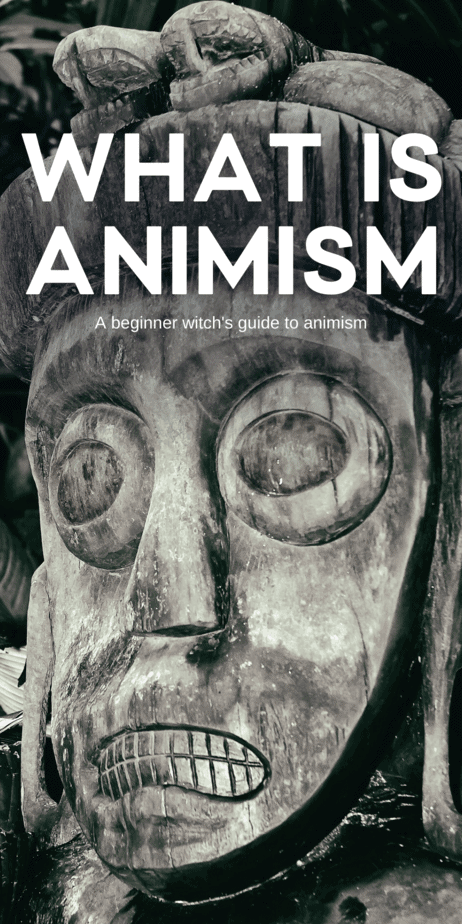 A beginner witch's guide to animism. A common practice involves trance, allowing spirits to overcome the practitioner. Similar practices abound in charismatic Christian communities, where the Spirit of God is believed to take over a person's body and allow them to speak in tongues and be healed. It's this same thing that witches and magicians can harness in their own lives, to help with difficult times and to get them through bad situations. #animism #trance #witch #witchcraft #pagan #religion