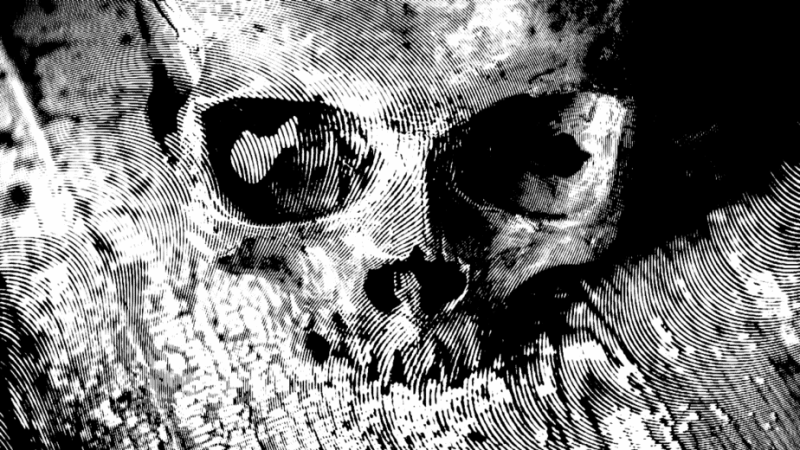 Decorative image of a skull on a wooden table