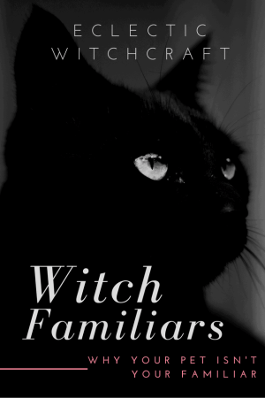 How to summon a familiar. What is my familiar spirit? A witch's guide to why your pet cat isn't your familiar #witch #witchcraft #pagan #wicca