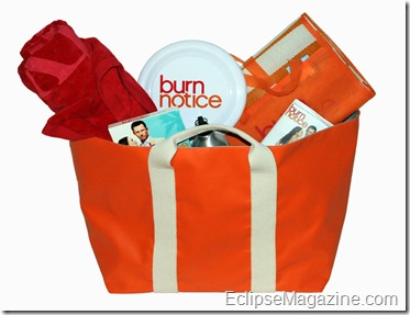 burnnotice_prizepack