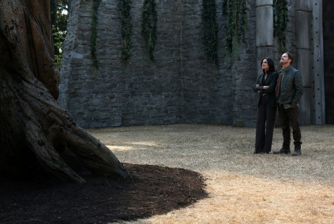 "ONCE UPON A TIME - ""The Price"" - In an effort to protect Emma, Regina steps up in a surprising way that will test her mettle as a force for good. King Arthur and Queen Guinevere throw a royal ball to welcome the heroes to Camelot, but when the celebration takes a deadly turn, David and Robin must leap into action or lose a crucial asset in the fight to save Emma. Back in Storybrooke, Hook deploys a tried-and-true technique in hopes of bringing Emma back to the light while the heroes discover that some unexpected baggage has followed them home from Camelot, on ""Once Upon a Time,"" SUNDAY, OCTOBER 4 (8:00-9:00 p.m., ET) on the ABC Television Network. (ABC/Jack Rowand) LANA PARRILLA, SEAN MAGUIRE"