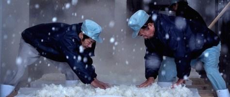 Birth of Saké