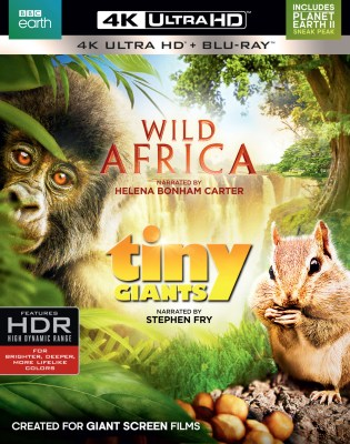 wild-africa-tiny-giants-uhd-2d