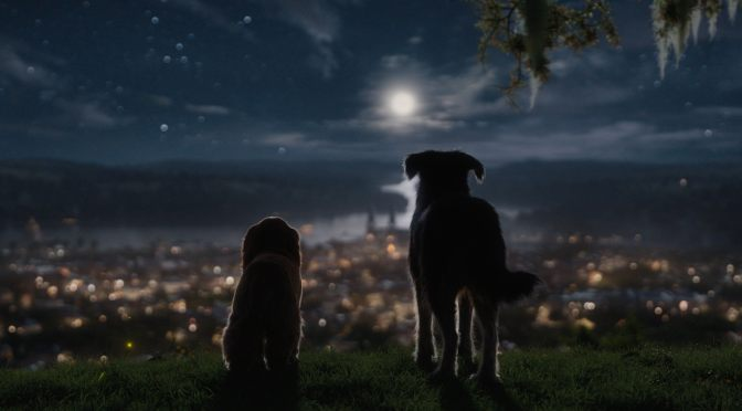 Every Day Could Be an Adventure Trailer: Disney+'s Lady and the Tramp!