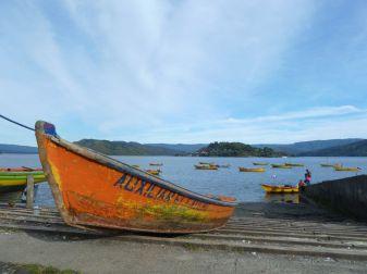 boat-495666