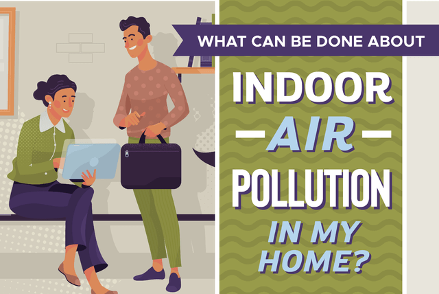 Indoor Air Pollution of my home