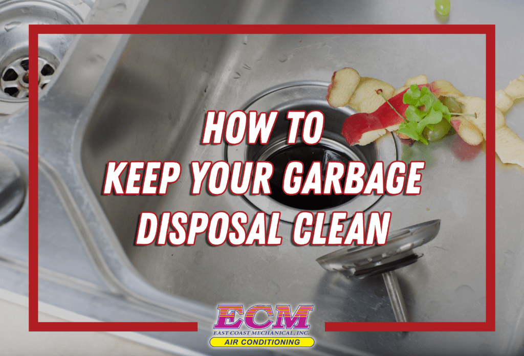 Keep Your Garbage Disposal Clean