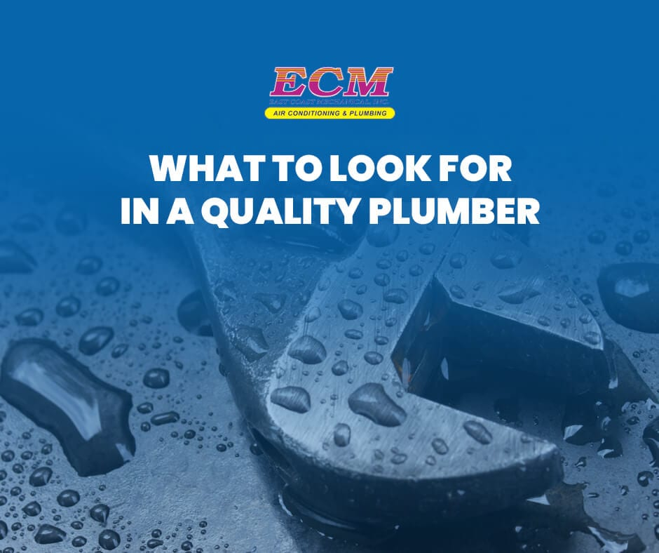 What to Look for in a Quality Plumber