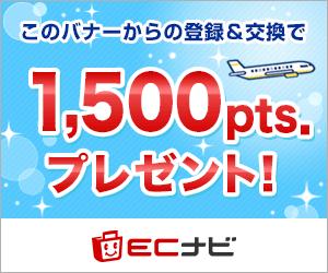 陸マイラー始めるならECナビ500ポイントプレゼント!