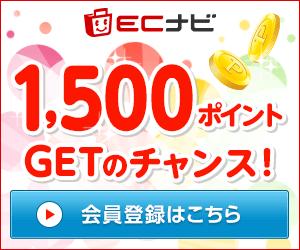 ECナビに登録&ポイント交換で最大2,000円分のポイントをプレゼント!2019年1月21日まで!