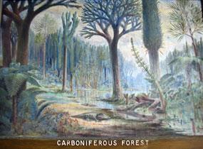 moerassen en bossen tijdens het carboon