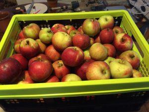 Krat met appels