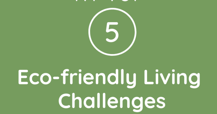 My Top 5 Eco-friendly Living Challenges