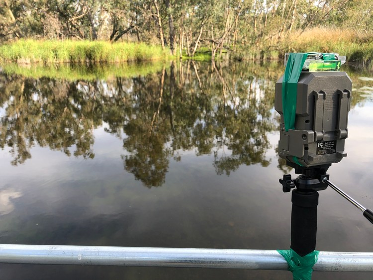 Field recording in the wetland