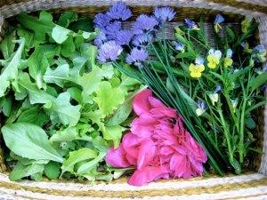 Jednogodišnje cvijeće u organskom vrtu