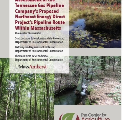 Scott Jackson, Bethany Bradley, Thomas Cairns Release Pipeline Study