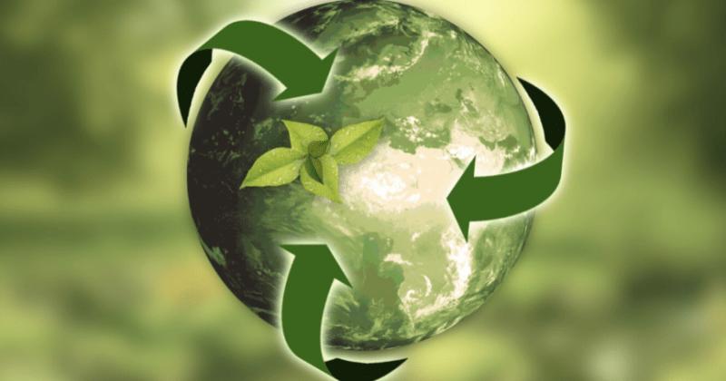 SES Students Among Undergraduate Sustainability Award Recipients