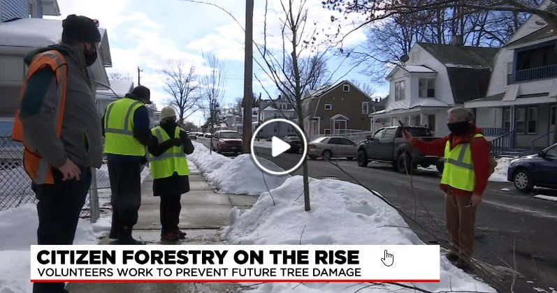 Ryan Fawcett's work on citizen forestry featured on WGGB