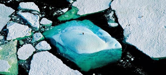 Planet Ocean, Yann Arthus-Bertrand