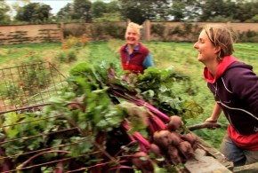 Voices-of-Transition_Leigh Court Farm-Bristol_Milpa Films