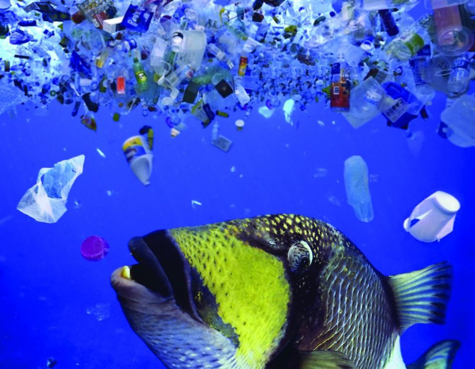 UN commits to stop ocean plastic waste