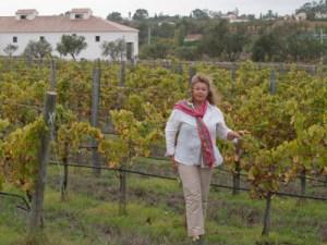 monte do alem vinho