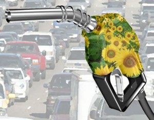 Biodiesel_pump_with_flowers-300x234
