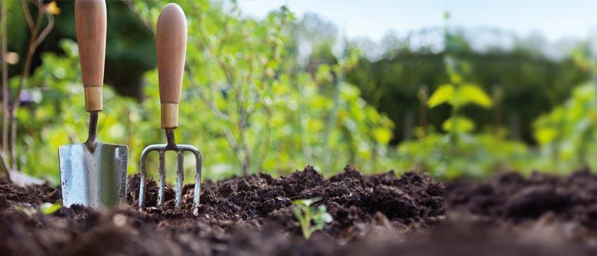 https://i0.wp.com/ecoalpispa.com/wp-content/uploads/2019/01/agriculturasostenible.jpg?resize=848%2C364&ssl=1