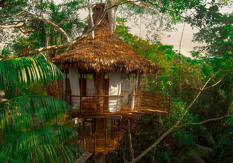 Treehouse Lodge The Amazon Iquitos Peru